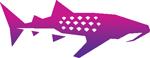 Whale Shark Creative