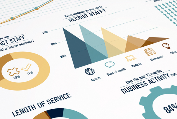 Infographics for Salary Guide